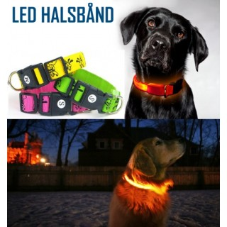LED Halsbånd Til Hund - smartviking.no